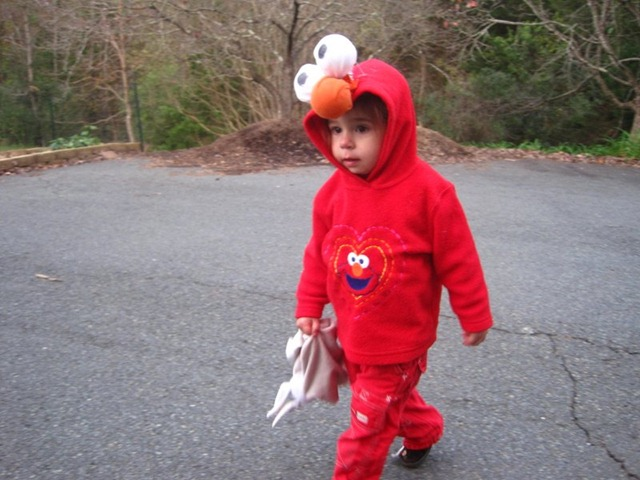 DIY Elmo Costume  sc 1 st  Growing Our Green Beans - WordPress.com & How to Make an Elmo Costume   Growing Our Green Beans